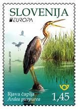 EUROPA - ptice - Rjava čaplja